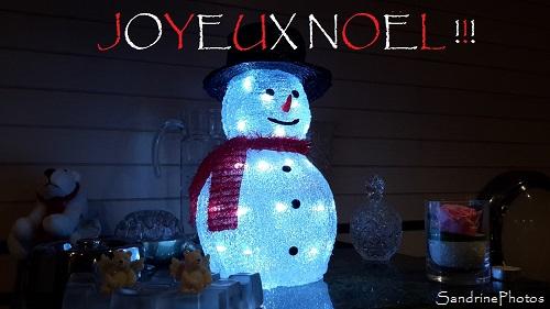 Bonhomme de neige lumineux, led, Joyeux Noël, Christmas, Décoration de Noël 2016, SandrinePhotos Esprit Nature, Bouresse (9)
