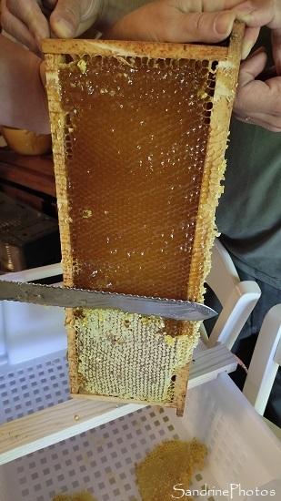 Extraction du miel 01 septembre 2021, Le Verger Bouresse