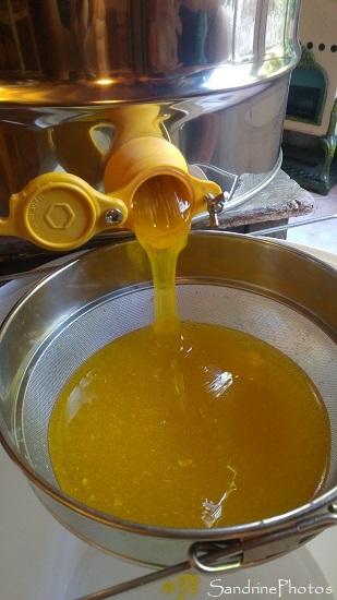 Extraction du miel 01 septembre 2021, le Verger, Bouresse (9)
