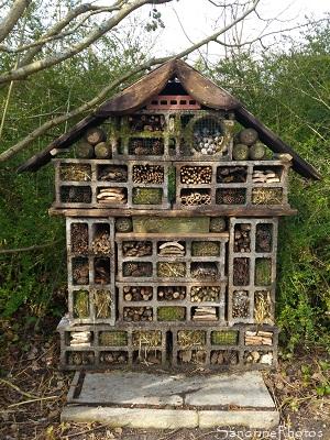 Hôtel à insectes, Abri pour les petites bêtes du jardin, Le Verger, Refuge LPO Bouresse, Biodiversité du Poitou, 86 (95)