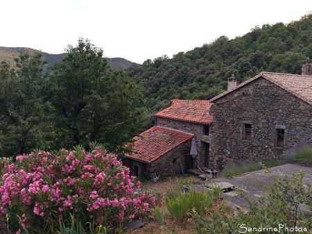 La Bergerie, Gîte de France de Fougairolles, Saint-Martial, Gard 30, SandrinePhotos Esprit Nature