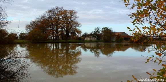 La Folie-Lieu-dit de Bouresse, petit village du Poitou-Charentes dans la Vienne