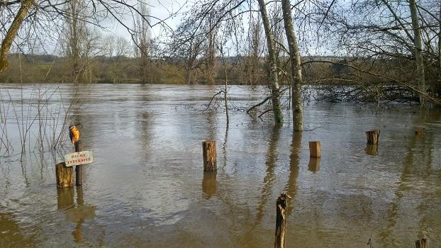 La Planchette inondée, 3 février 2021, Crue de la Vienne, Poitou-Charente, Nouvelle Aquitaine (4)
