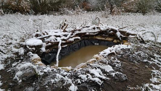 Mare, Jardin sous la neige, février 2018, Refuge LPO Le Verger, Bouresse, Poitou (39)