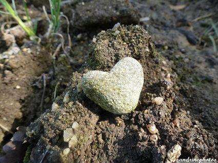 petit coeur de granite un coeur sur la main